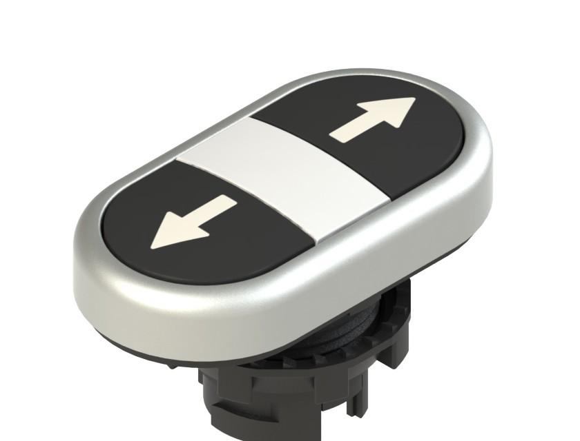 E2 1PDRL9AAAB Pizzato Elettrica Двойная пониженная плоская кнопка, с маркировкой