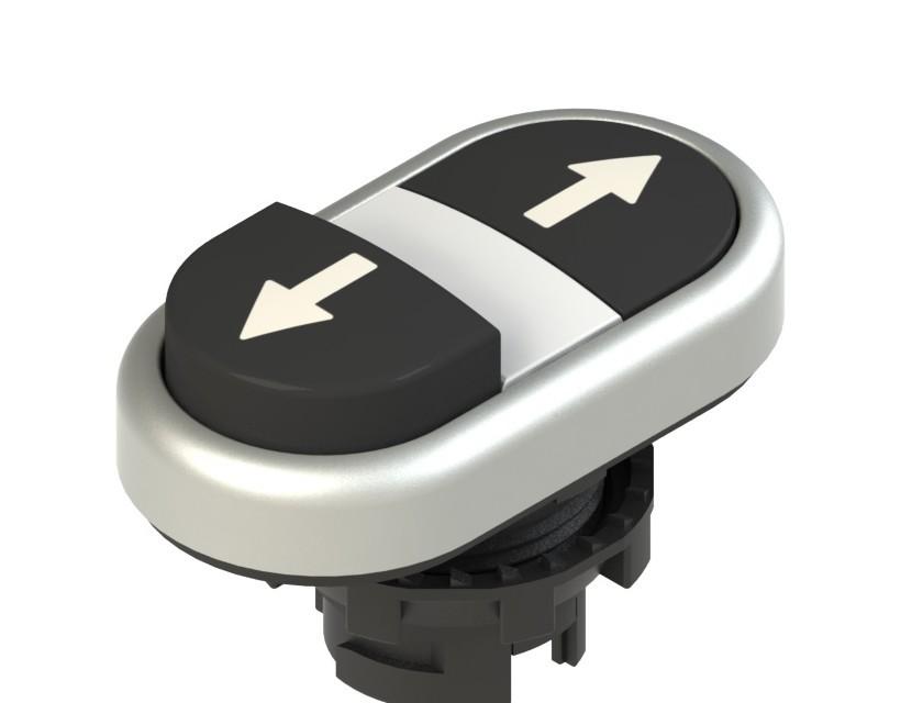 E2 1PDSL9AAAB Pizzato Elettrica Двойная пониженная выступающая кнопка, с маркировкой