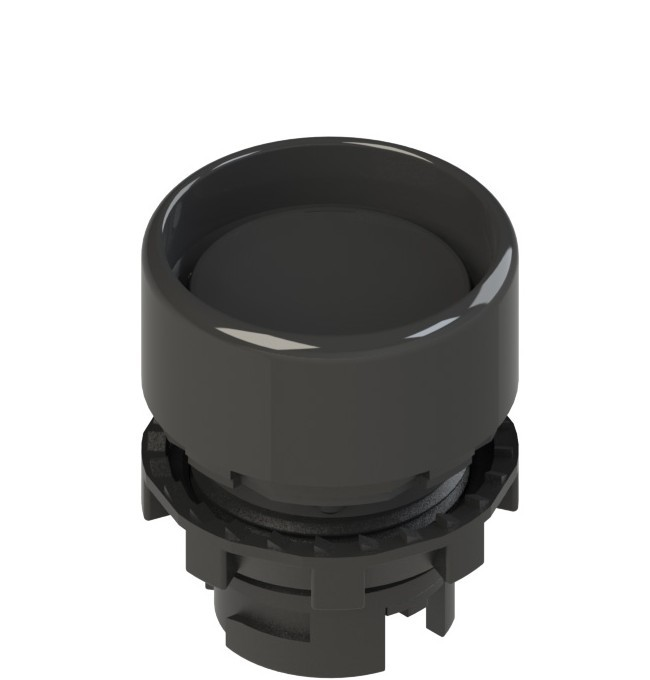 E2 1PU2P1210 Pizzato Elettrica Черная вдавленная кнопка с пружинным возвратом