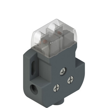 DS CN1VA0 Pizzato Elettrica Дверной контакт с прозрачной головкой
