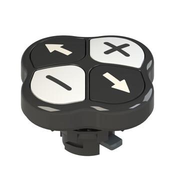 E2 1PQFA1QAAF Pizzato Elettrica Четверная кнопка