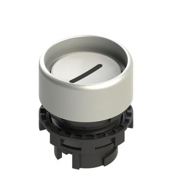 E2 1PU2P229L2 Pizzato Elettrica Белая вдавленная кнопка с пружинным возвратом, с маркировкой