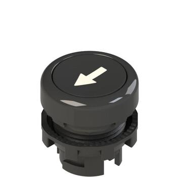 E2 1PU2R121L8 Pizzato Elettrica Черная плоская кнопка с пружинным возвратом, с маркировкой